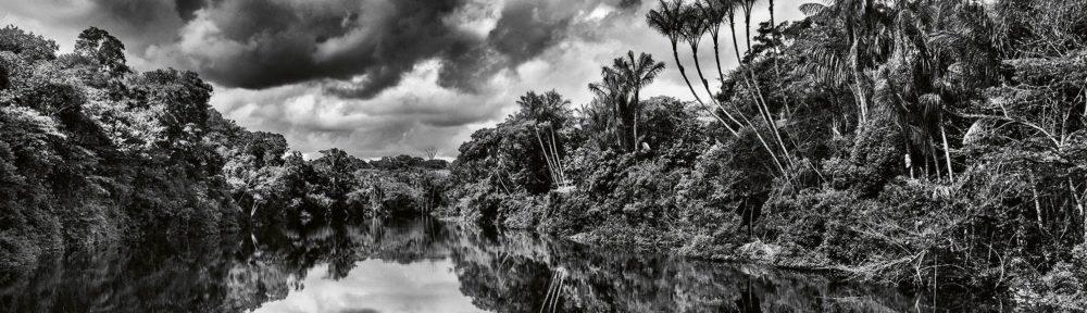Jean-Michel Jarre - Amazônia cover