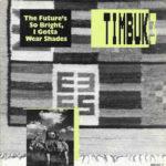 Timbuk 3 - The Future's So Bright I Gotta Wear Shades